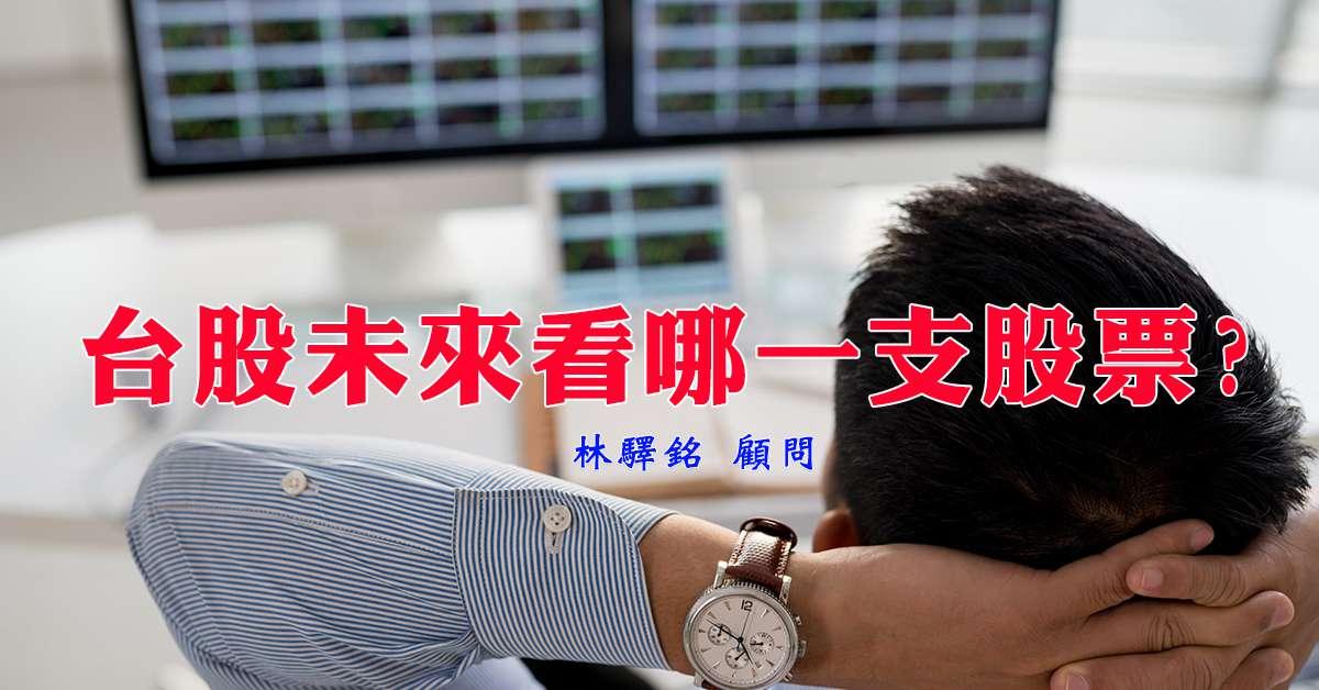 台股未來看哪一支股票?