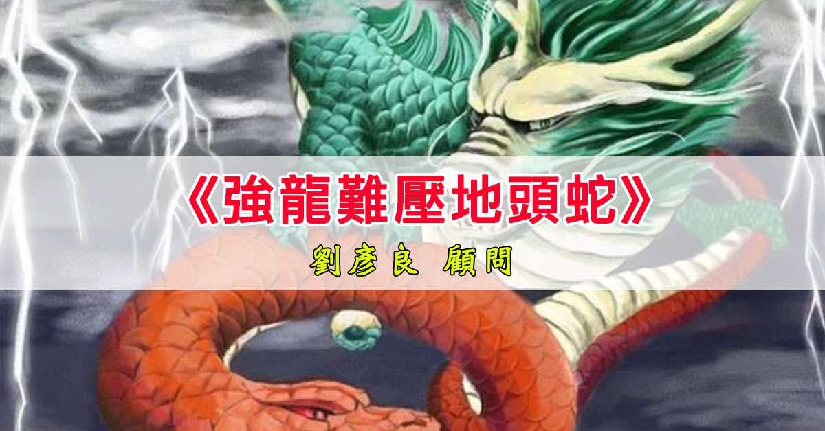 《強龍難壓地頭蛇》