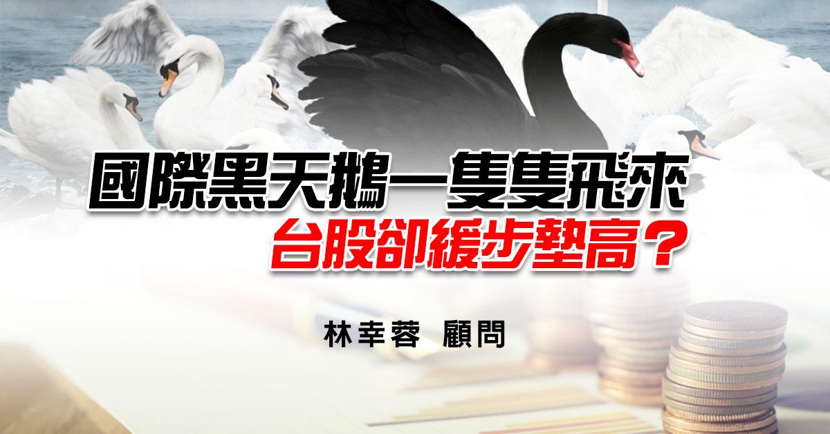 國際黑天鵝一隻隻飛來,台股卻緩步墊高?